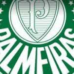 Preço das Camisas do Palmeiras